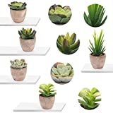EKKONG Künstliche Sukkulenten Pflanzen Künstliche Blumen Bonsai Kunstpflanze mit grauen Topf Mini Kunststoff Fälschung Grünes Gras, für Hochzeit/Büro/Zuhause Dekoration (5 pcs) - 2