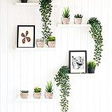 EKKONG Künstliche Sukkulenten Pflanzen Künstliche Blumen Bonsai Kunstpflanze mit grauen Topf Mini Kunststoff Fälschung Grünes Gras, für Hochzeit/Büro/Zuhause Dekoration (5 pcs) - 7