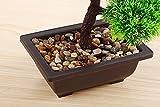 japanische deko Künstliche Bonsai Baum Pflanze für Dekoration Wohnung Schlafzimmer Hochzeit Einschulung Geburtstag, 40cm (Grün), Green - 2